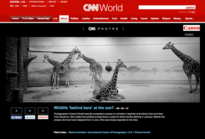 Wildlife? about animals in captivity in New York featured on CNN on June 2012. See more at: http://cnnphotos.blogs.cnn.com/2012/06/04/wildlife-behind-bars-at-the-zoo/