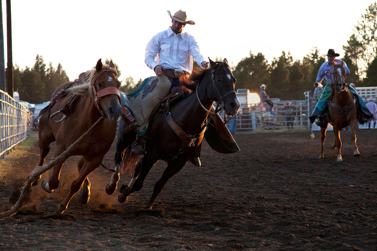 A cowboy rides hard chasing another horse at a rodeo in Washington, USA during a sunset meeting.