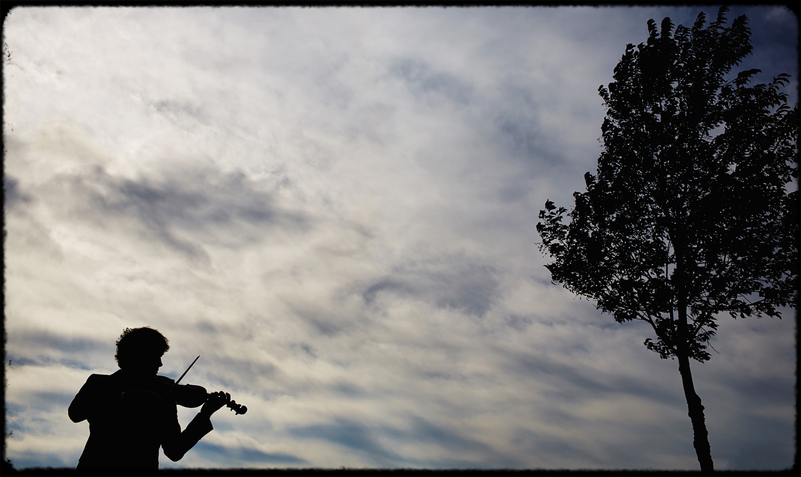 silouette of musician playing violin at wedding