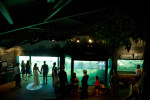 bride and groom in front of aquarium.