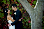 alice-johnny-013-viansa-winery-sonoma-wedding-photographers-theilen-photography