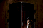 alice-johnny-016-viansa-winery-sonoma-wedding-photographers-theilen-photography