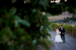 alice-johnny-024-viansa-winery-sonoma-wedding-photographers-theilen-photography