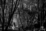 mywed-awards-009-destination-wedding-photographer-theilen-photography
