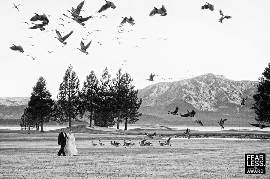 tara-fearless-006-best-lake-tahoe-wedding-photographers-theilen-photography