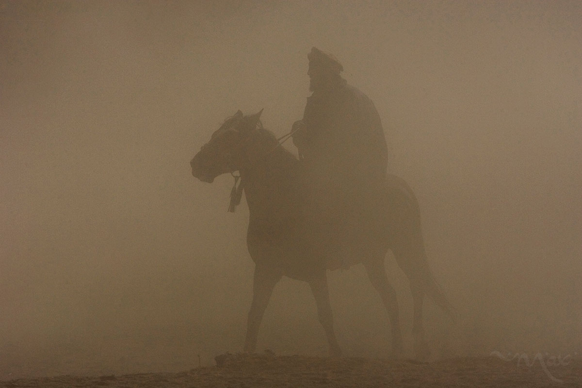 A horseman emerges from the dust of a duel for a dead calf on Friday, October 26, 2007.