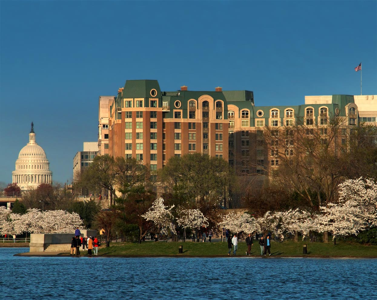 US Capitol and hotel across water with cherry trees in bloom