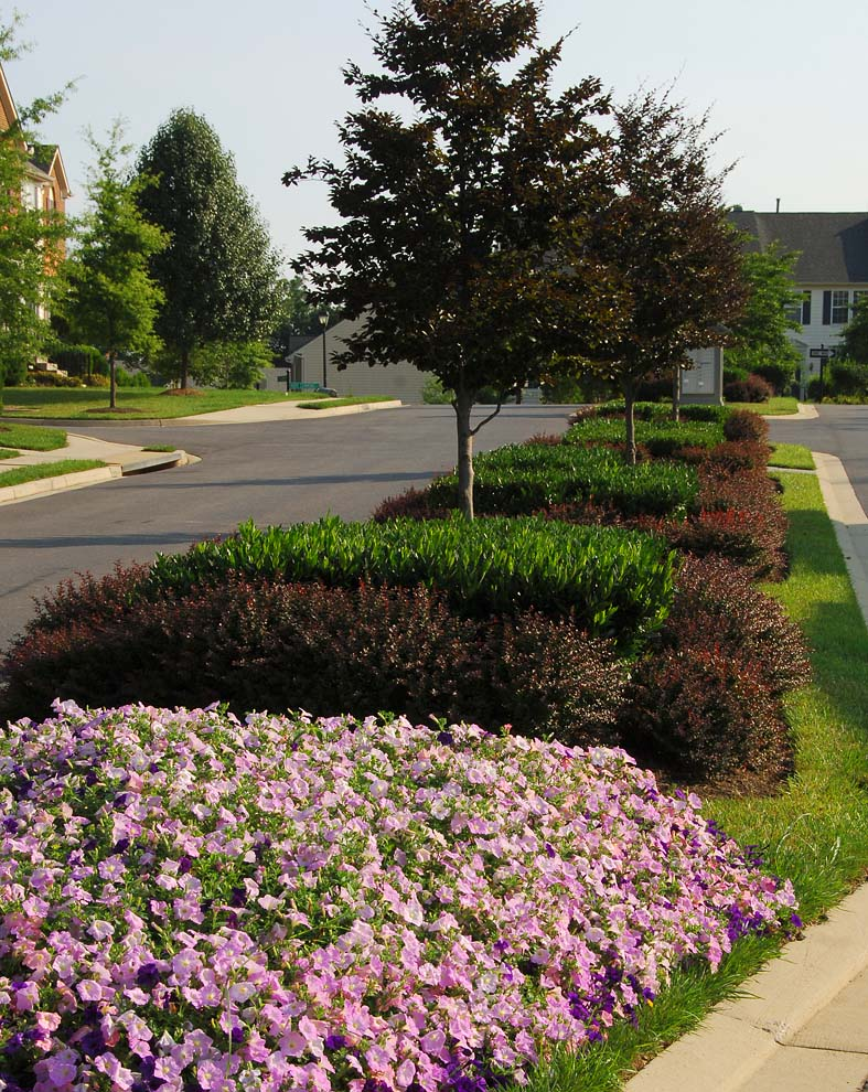 Urbana, MarylandClient: Ruppert Landscaping