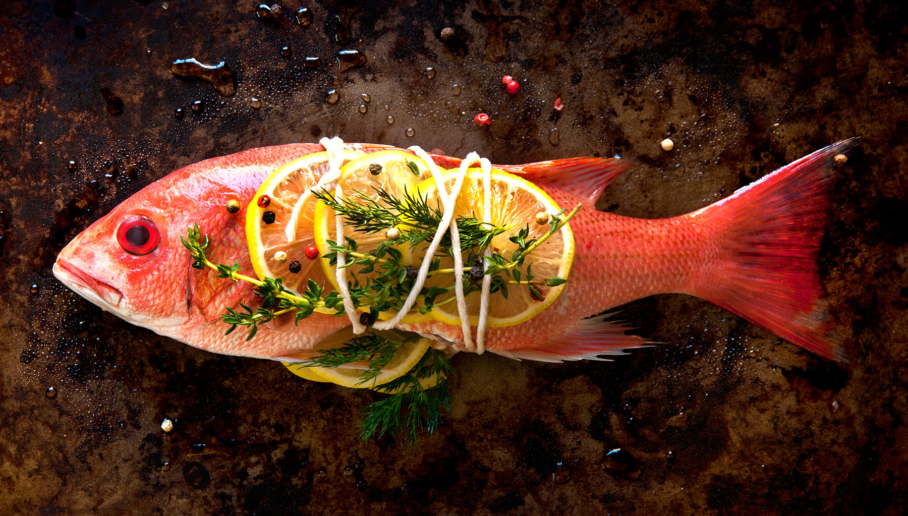 Fish-Carl Kravats Food Photography
