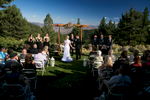 tannenbaum-weddings-35