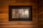 Birch_reflection-