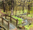 Bridge_Brook_1-