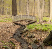 Bridge_Brook_2-