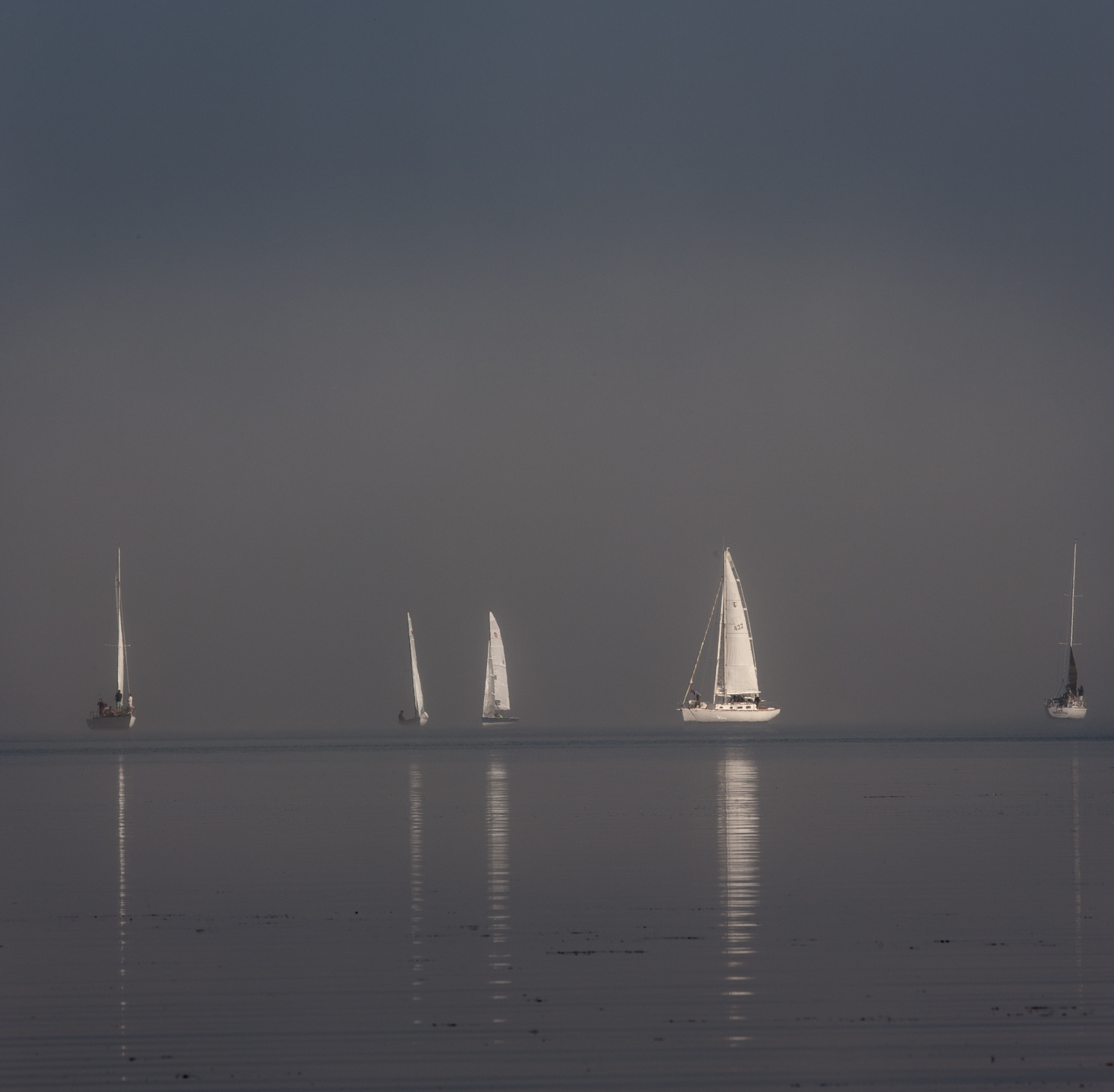 Fall_Fog_Sail-0421