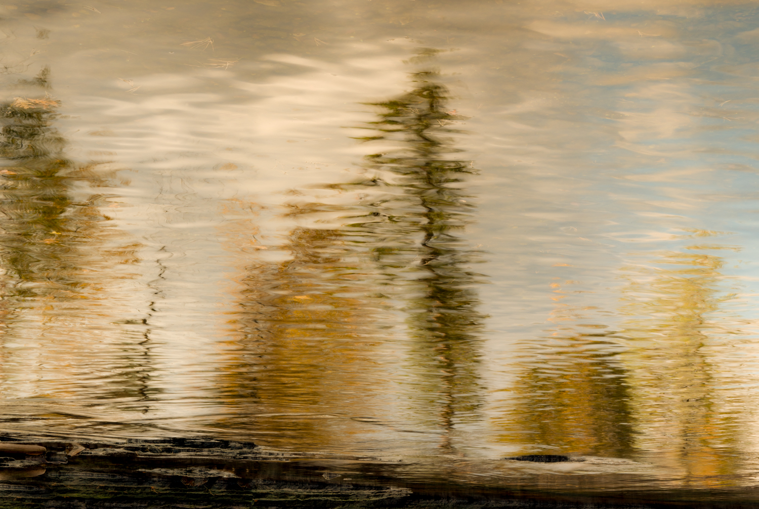 Fall_Reflection-