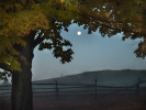Fall_on_Farm-2