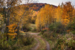 Field_Road_edit-