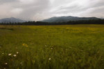 Lake_Placid_Field-