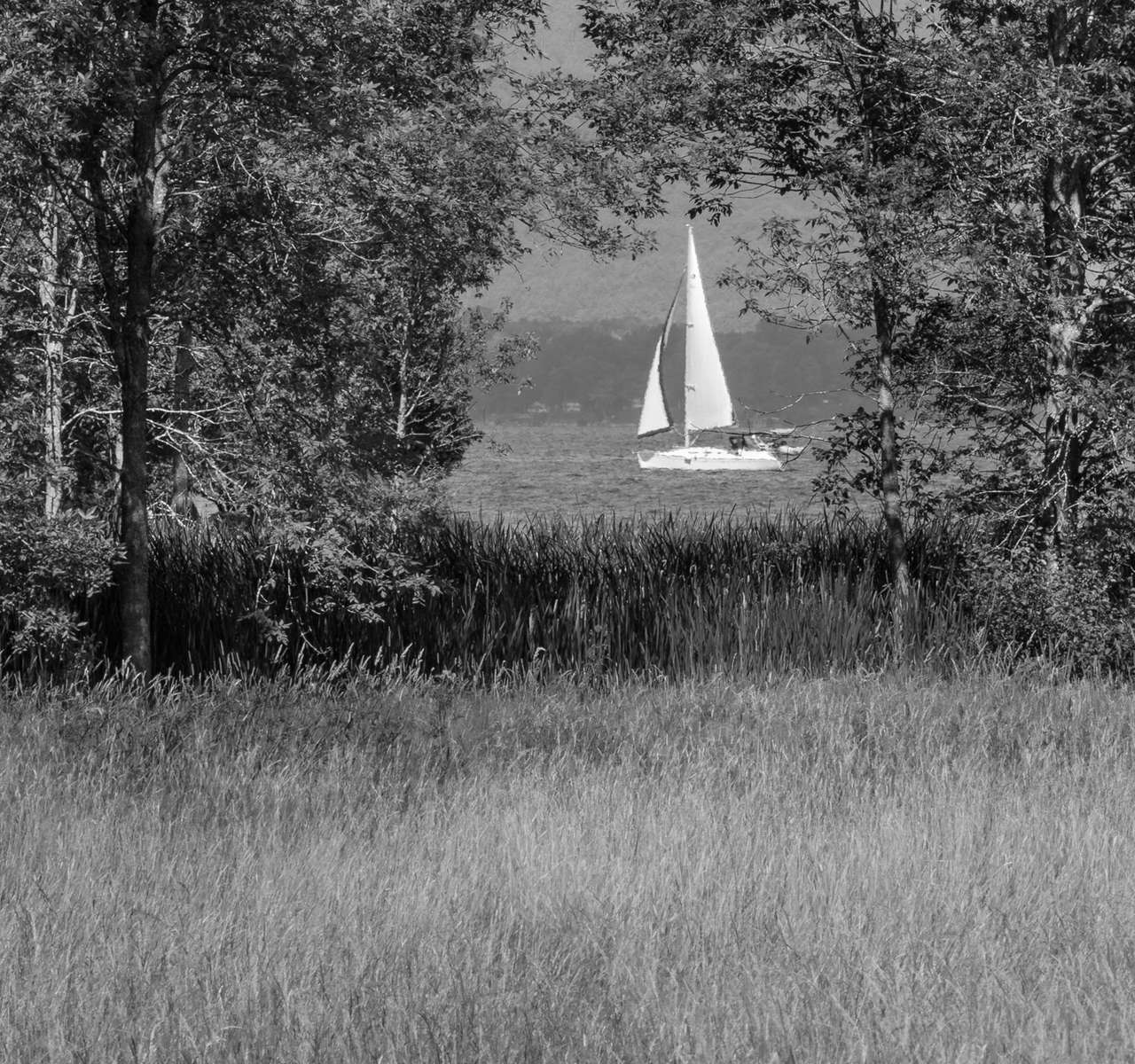 Sail by Shelburne Farm