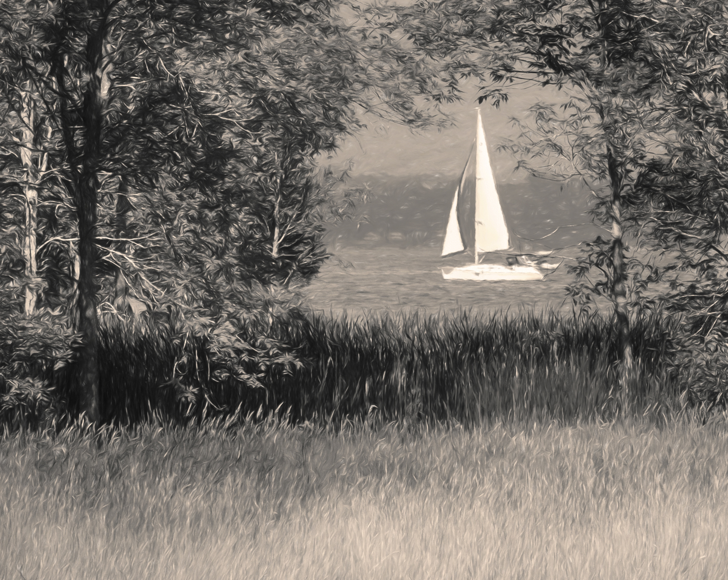 Sailing_by_Shelburne_Farms-