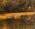 Shelburne Bay Fall Reflection