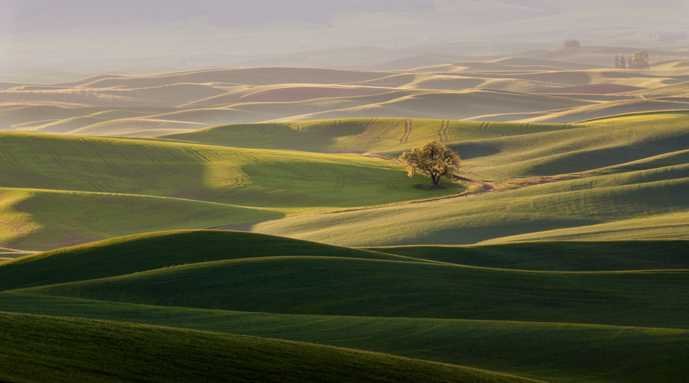 Palouse Washington