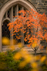 St. Albans campus life on October 26, 2015. Photo by Paul Morse