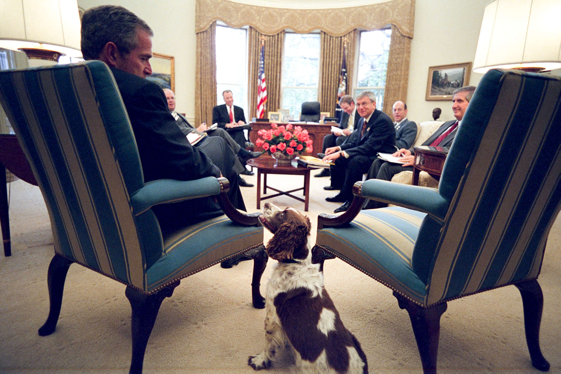 PRESIDENT BUSH MEETS WITH NICK CALIO, MITCH DANIELS, KARL ROVE, LEWIS LIBBY, DAN BARTLETT, JOSH BOLTEN AND ANDY CARD. THE PRESIDENT PETS SPOT DURING THE MEETING. ARI FLEISCHER TALKS WITH CALIO AND DANIELS IN THE OUTER OVAL OFFICE PRIOR TO THE MEETING. CALIO TALKS ALONE WITH CARD.Location: OVAL OFFICE