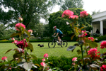 President Bush: Bike Riding on the South Lawn. Rose Garden.