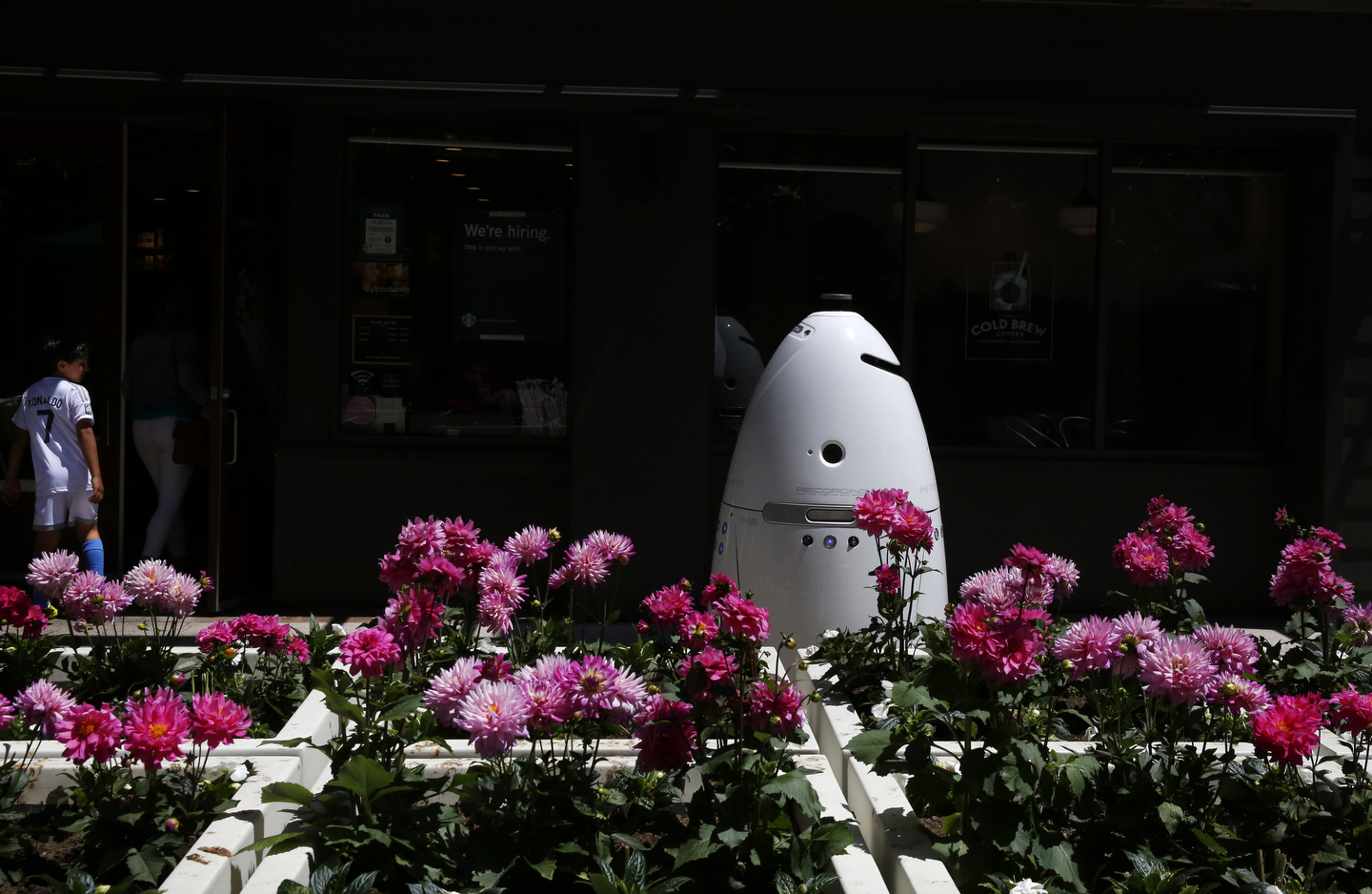 A Knightscope K5 autonomous security robot roams around the Stanford Shopping Center June 15, 2016 in Palo Alto, Calif.