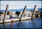 boy-fishing-dock-virgina-family-photography